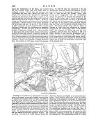 Pagina 226