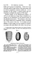 Pagina 181