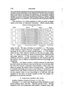Pagina 158