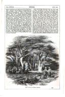 Pagina 535
