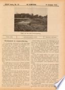 19 okt 1917