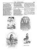 Pagina 809