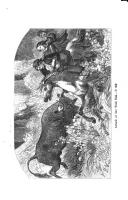 Pagina 411