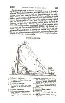 Pagina 213