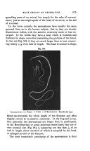 Pagina 575