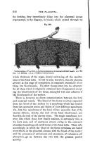 Pagina 646