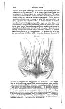 Pagina 510