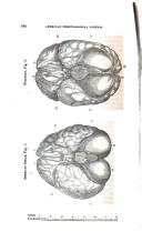 Pagina 546