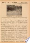 9 nov 1917